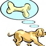 Dream - dog